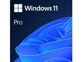 DSP Windows 11 Pro Eng 64-bit, FQC-10528